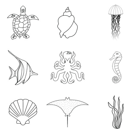sea creatures: Collection of hand drawn sea creatures in modern mono line style on isolated white background.