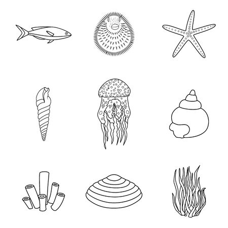 oceanside: Collection of hand drawn sea creatures in modern mono line style on isolated white background.