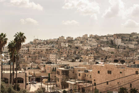 View of the city of bethlehem in the occupied palestinian territorys with palm trees in the foreground Foto de archivo