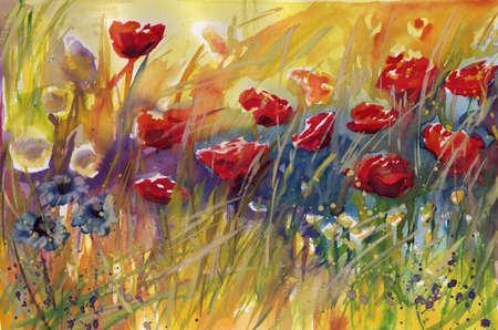 amapolas, flores,
