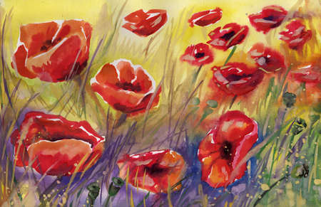 poppies: poppies, flowers,