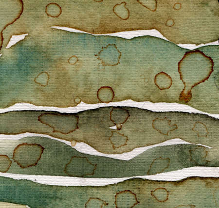 painted lines: Artistic background watercolor on watercolor paper