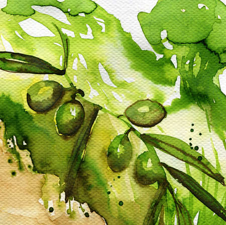 mural: watercolor illustration depicting green olives Stock Photo