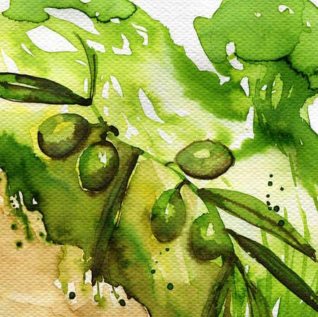 brisk: watercolor illustration depicting green olives Stock Photo