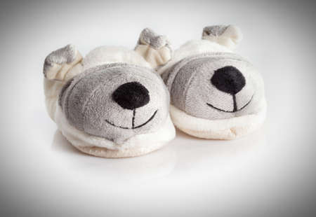 humorous doggy baby shoes isolated on a white background