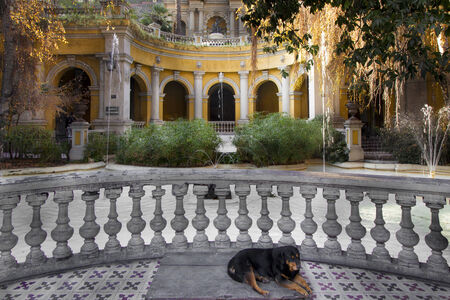 Dog sleeping in a courtyard of a park on Santa Lucia Hill, Santiago, Chile 2011-06-23 2:21:46 PM