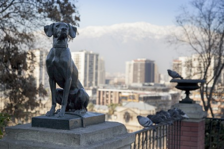 Dog statue with city in the background, Santiago, Chile 2011-06-23 2:32:21 PM