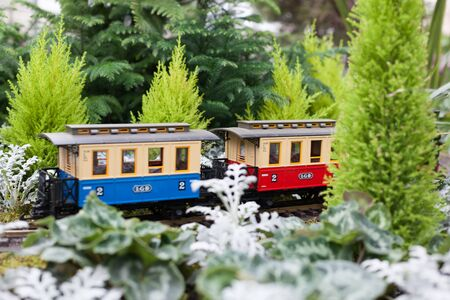 conservatory: Toy train surrounded by conservatory Christmas green plants at Allan Gardens, Toronto, Ontario, Canada