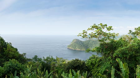 elevated view: Elevated view of forest at seaside, Trinidad, Trinidad And Tobago