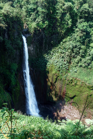 fortuna: High angle view of La Fortuna Waterfall in a forest, Alajuela Province, Costa Rica