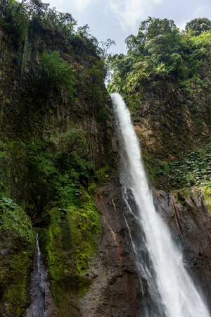 fortuna: Low angle view of La Fortuna Waterfall in a forest, Alajuela Province, Costa Rica Stock Photo