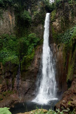 View of La Fortuna Waterfall in a forest, Alajuela Province, Costa Rica
