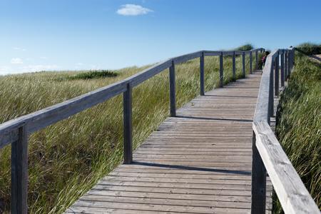 Boardwalk passing through landscape, Prince Edward Island, Canada