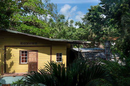 tourist resort: Tourist resort among the trees on island, Trinidad, Trinidad and Tobago