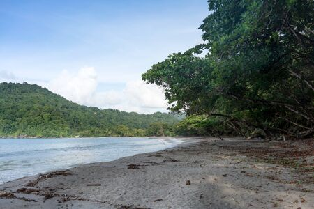Scenic view of beach with overlooking trees and hill, Trinidad, Trinidad and Tobago