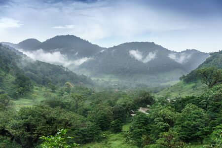 tranquillity: Photography, Scenics, Dawn, Outdoors, Elevated View, Nature, Beauty In Nature, Cloud - Sky, Sky, Idyllic, Lush, Wilderness, Physical Geography, Tranquillity, Landscape, Fog, Weather, Climate, Majestic, Awe, Colour Image, Horizontal, Environment, Travel De Stock Photo