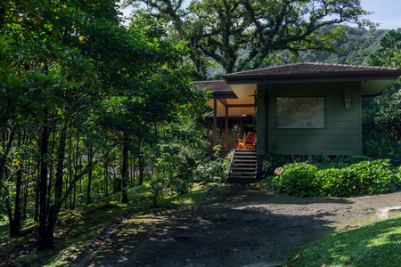 colour image: Outdoors, Photography, Architecture, Building Exterior, Tree, Green, Lush, Tranquil Scene, Rainforest, Forest, Cottage, Steps, Environment, Colour Image, Day, Horizontal, No People, Nature, Vacations, Building Entrance, Log Cabin, Tourism, Travel, Travel  Stock Photo