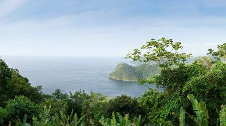 colour image: Colour Image, Photography, Day, Outdoors, No People, Horizontal, Nature, Scenics, Idyllic, Tree, Environment, Elevated View, Beauty In Nature, Green, Forest, Lush, Majestic, Awe, Horizon Over Water, Sea, Caribbean, Coastline, Mountain, Cliff, Coastal Feat