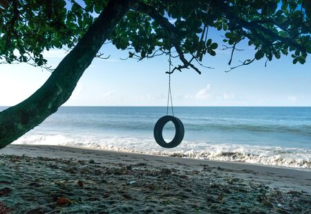 tropical climate: Coastal Feature, Coastline, Colour Image, Day, Island, Non-urban Scene, Scenics, Summer, Tourism, Tranquil Scene, Travel, Travel Destinations, Trinidad And Tobago, Tropical Climate, Water, Trinidad - Trinidad And Tobago, Branch, Absence, Beach, Hanging, H