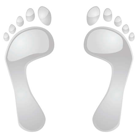 grey: Illustration of two glossy grey feet Illustration