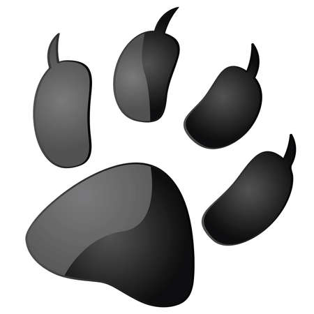 pawprint: Glossy illustration of the outline of an animal paw print