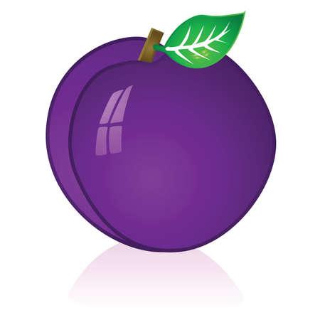 Glossy illustration of a ripe purple plum Çizim