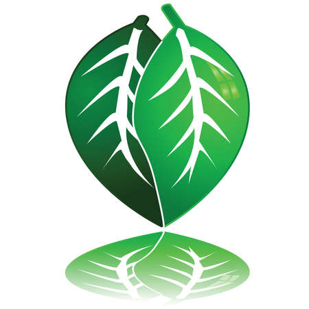 Concept illustration of a heart made up of two leaves, meaning love for nature