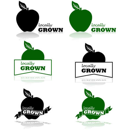 Concept illustration showing an apple and the words Locally Grown