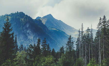 A picture of the Tatra Mountains landscape.