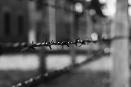 A black and white picture of a close-up of a barbed wire section at Auschwitz I.