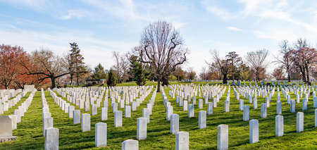 A picture of the Arlington National Cemetery. Editöryel