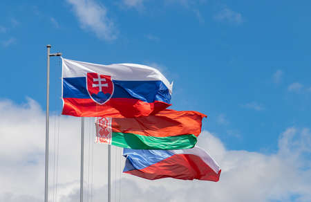 A picture of some Slavic countries (especially Slovakia) on display at the Slavín monument.
