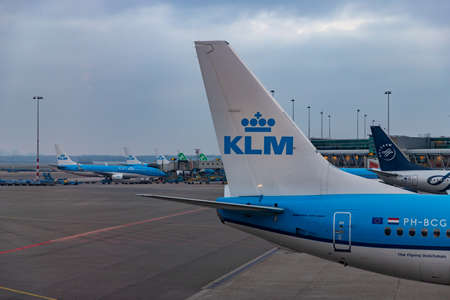 A picture of some airplanes parked at the Schiphol Airport, focused on the rudder and vertical stabilizer of a KLM model.