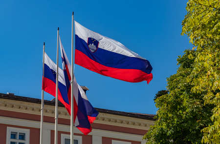 A picture of multiple Slovenian flags waving in the air.