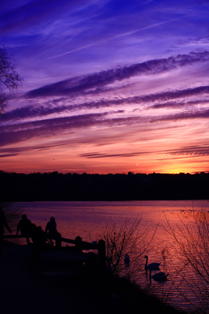 Beautiful colorful sky at sunset over the sea with a gradient of pink and purple colors. Silhouette of a couple with a stroller who looks at a swan in the reflections of the sun in the water