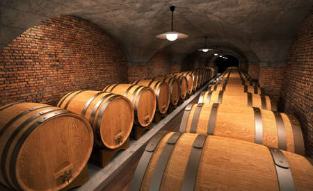 cellar with wooden barrels photo
