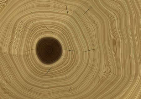 burl wood: Cut Tree Close-up Realistic Bitmap Illustration