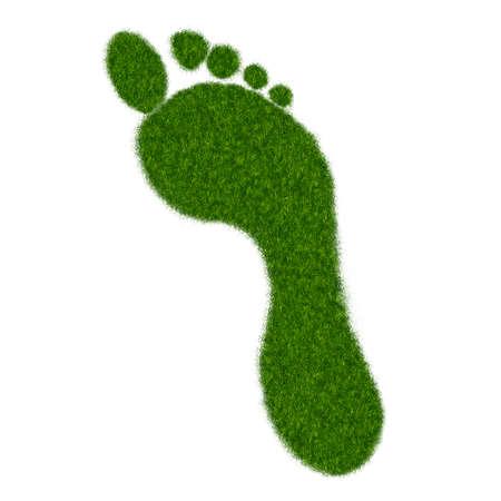 footprint: Ilustraci�n realista de derecha huella sobre hierba