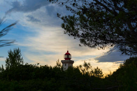 pinetree: Backlit Lighthouse at Dusk Surrounded by Pinetrees