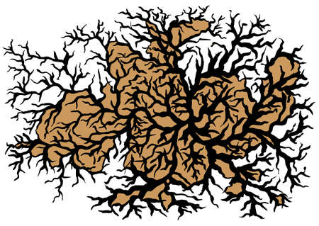 complexity: Tree Branches Abstract Background Vector Illustration Illustration