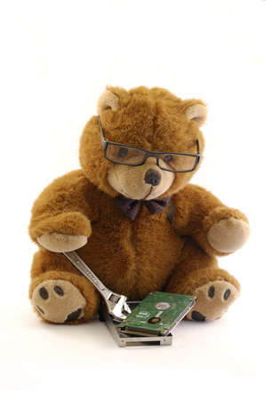 teddy bear repairing a hard drive from a laptop isolated in a white background