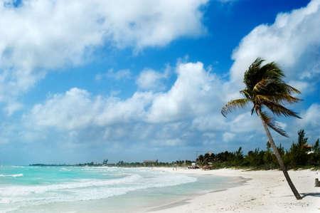 playa tropical en verano, Mexico Riviera Maya