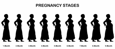 Pregnancy stages of a muslim woman silhouettes. All the objects and body stages are in different layers and the text types do not need any font. Illustration