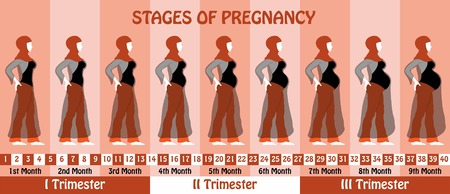 Pregnancy. All types of objects Illustration