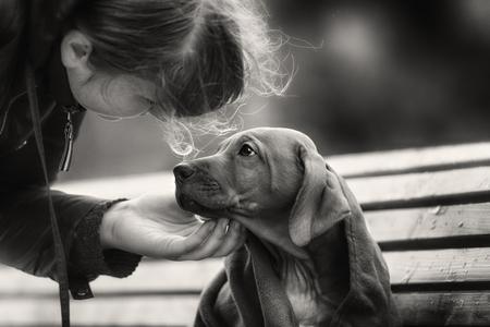 Homeless kleine puppy knagen een bot in openlucht