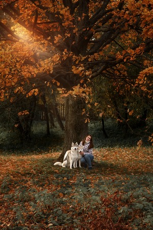 girl plays with her dog in fallen autumn leaves Reklamní fotografie