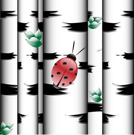 Texture Ladybird on tree of the birch in wood Vektorové ilustrace