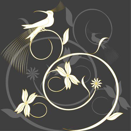 Paradise Bird Stock Vector - 6810810