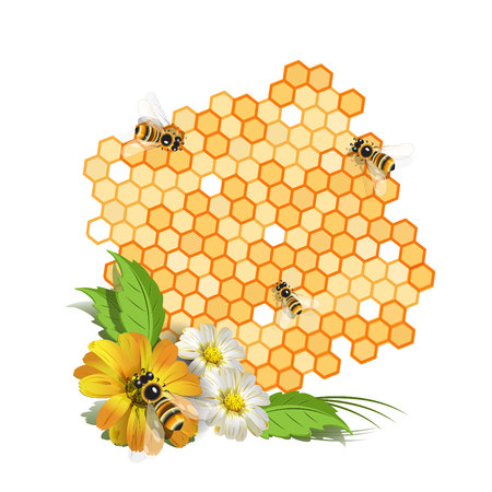 honey liquid: Bees and flowers