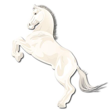 blanching: horse